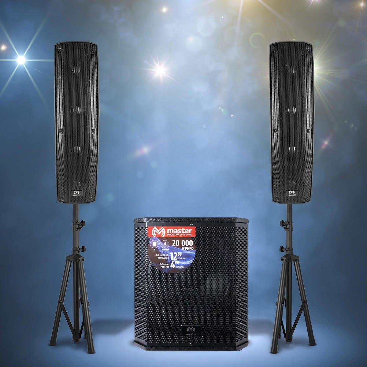 Sistema de Audio Profesional Mahm-Array2 1 Master
