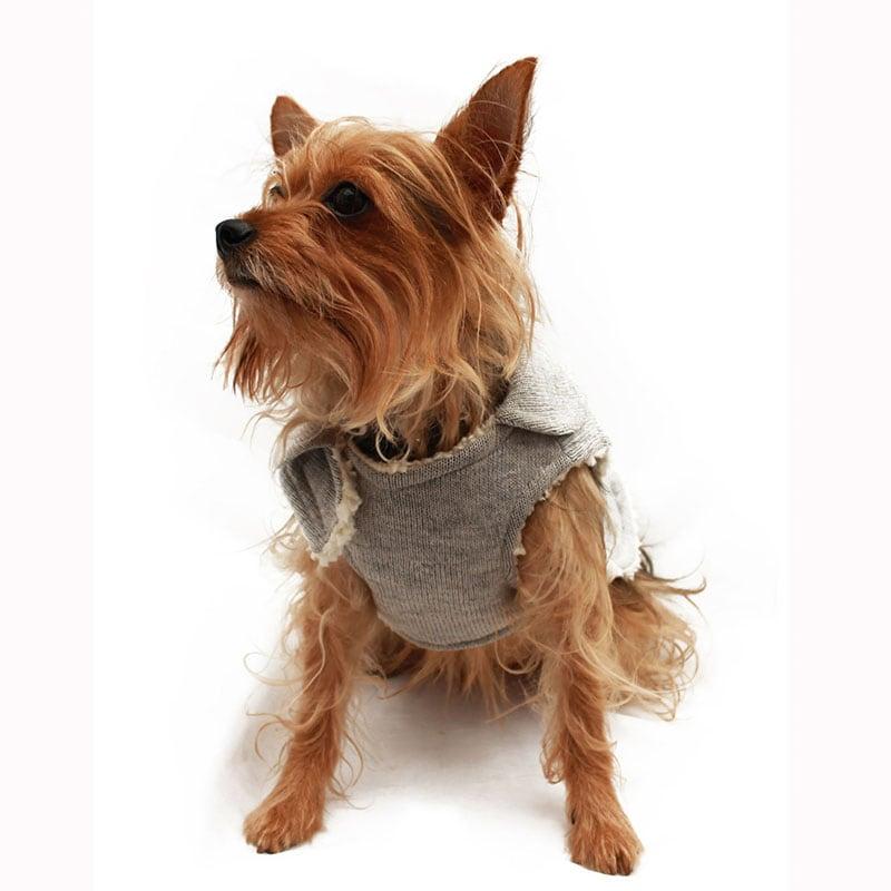 Trendy Coat Gray Pet Pals Boutique