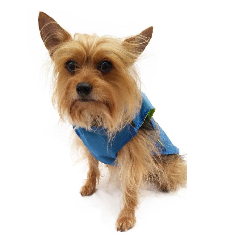Raincoat Blue Pet Pals Boutique