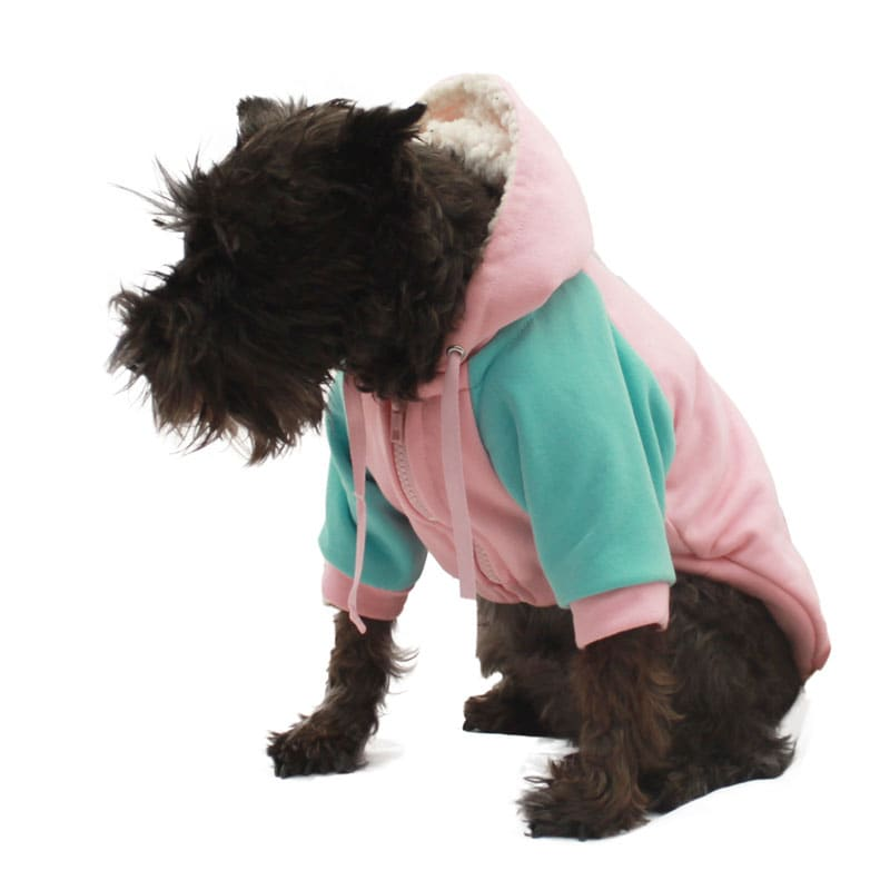 Candy Hoodie Pet Pals Boutique