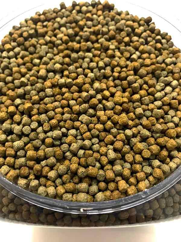 Alimento Para Iguana Verde Juvenil Sabor Platano 700 g X 3 Pz