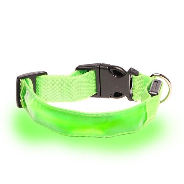 Collar Luz Led Paseo Nocturno Para Perro