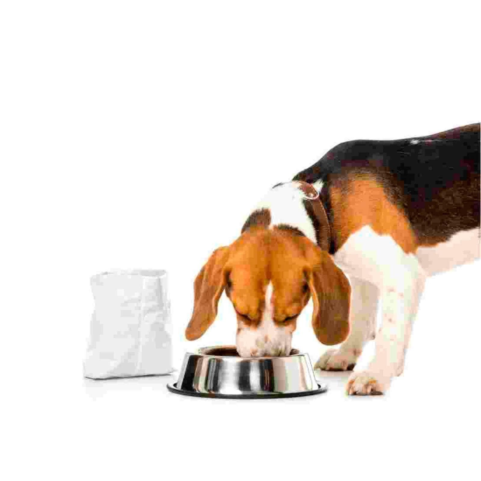 Alimento Húmedo Perro Adulto Mature Lata 370 g Hills