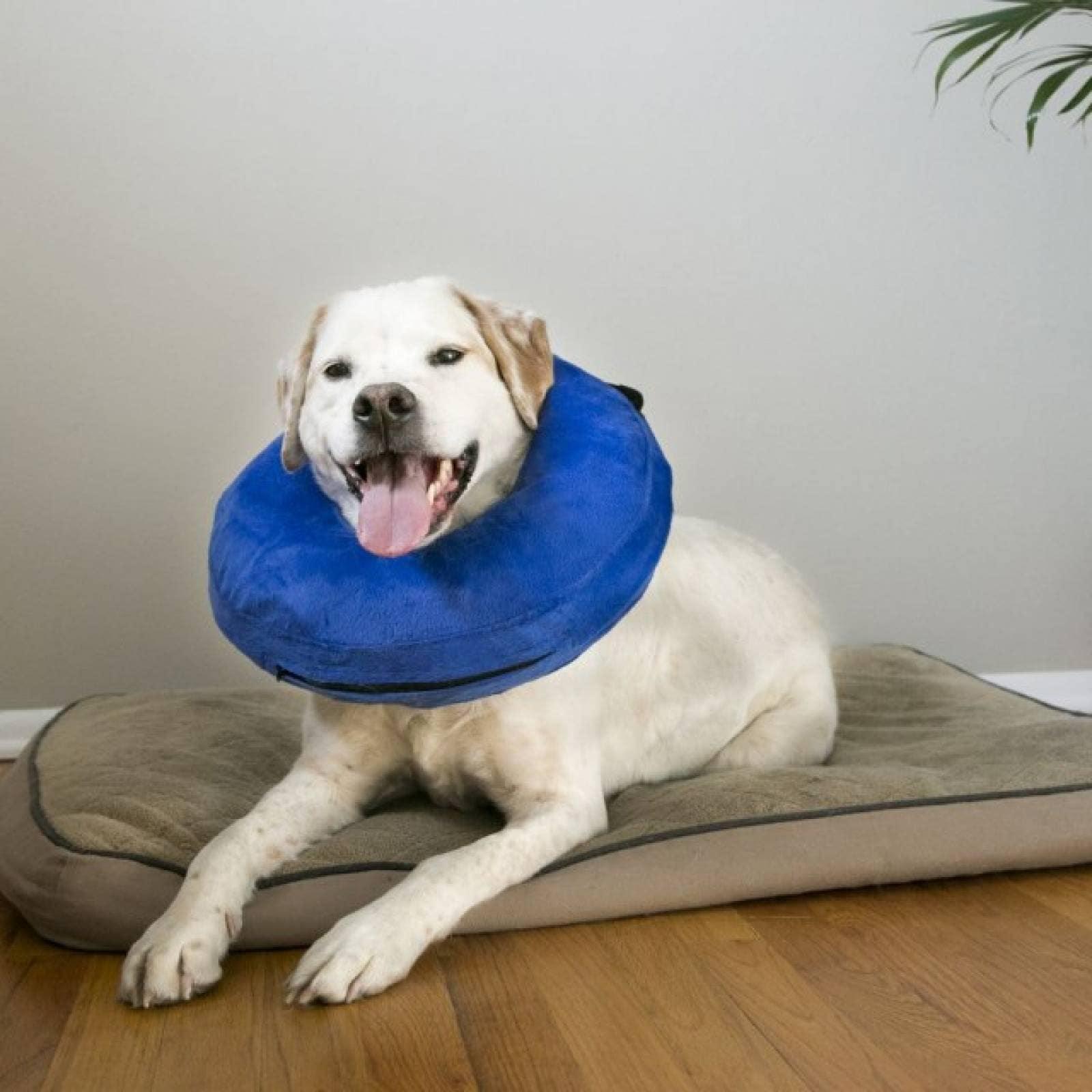 Kong Cloud Collar para Perro Acojinado Xgde