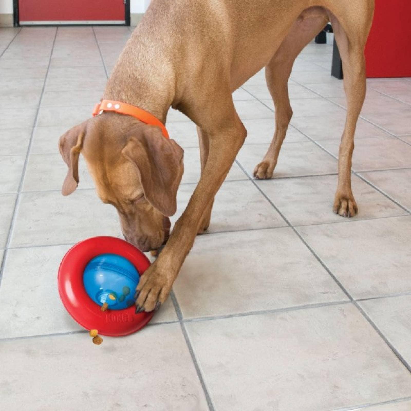Kong Gyro Juguete para Perro Dispensador de Premios Gde