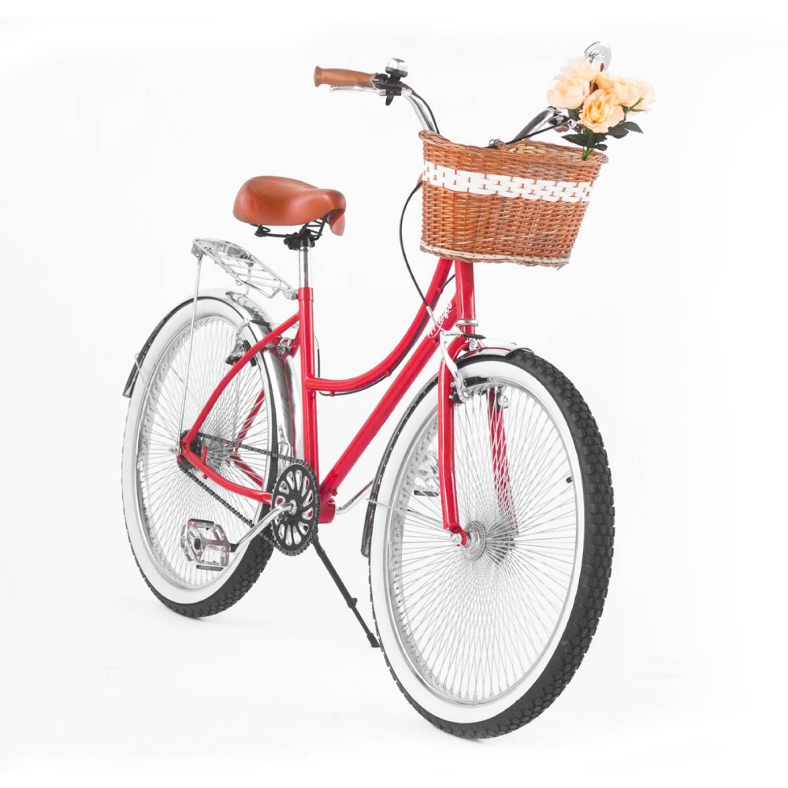 Bici Inglesa144 R-26 Portabultos Salpicadera Manubrio Gaviota 144 Rayos Bikes
