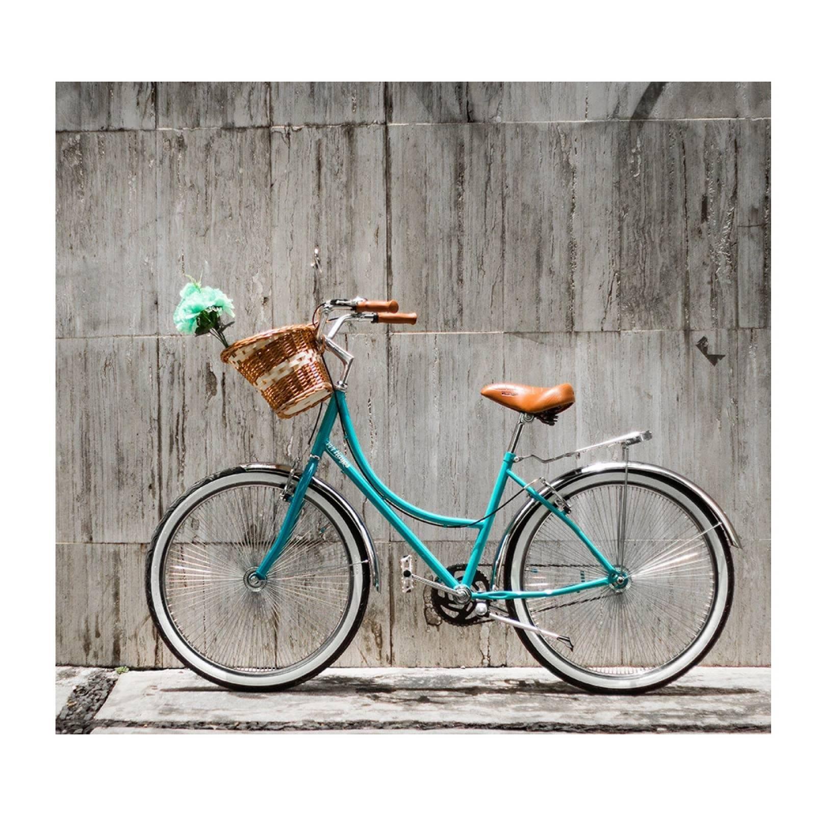 Bici Inglesa144 R-26 Portabultos Salpicadera Reflejantes 3M 144 Rayos Bikes
