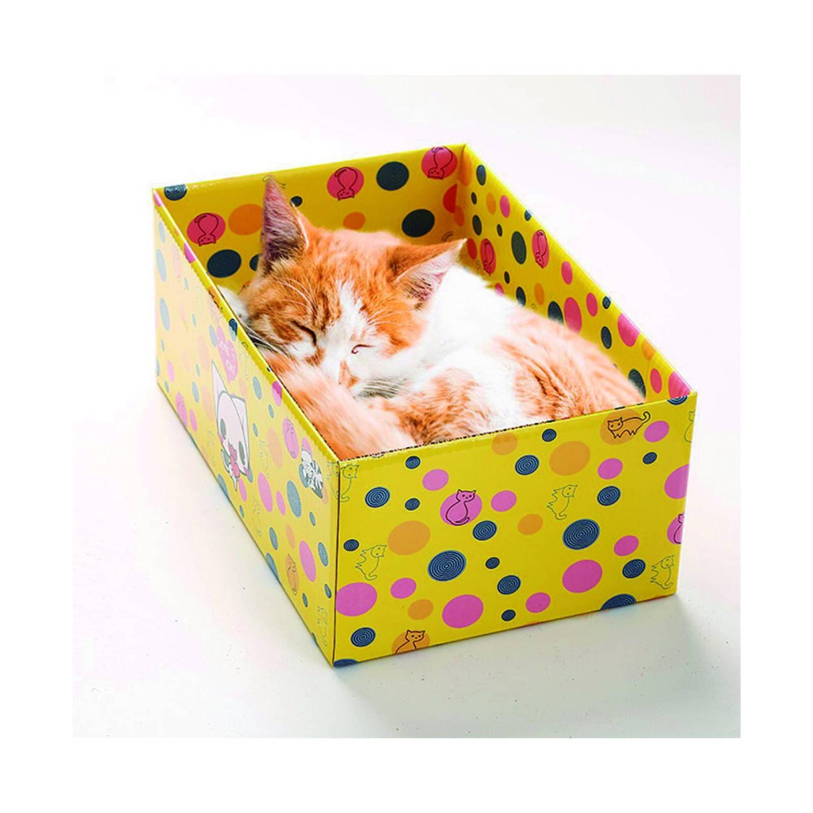 Caja Rascador para Gatos